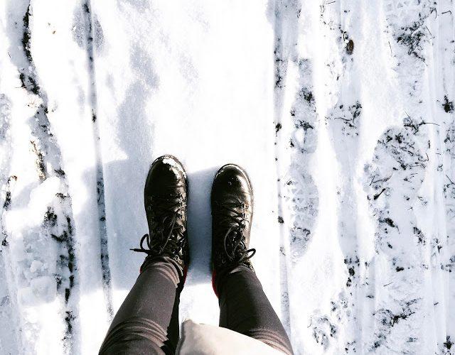 Na śniegu